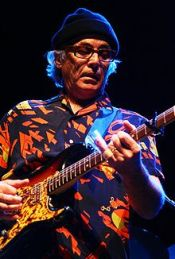 220px-Ry_Cooder_playing